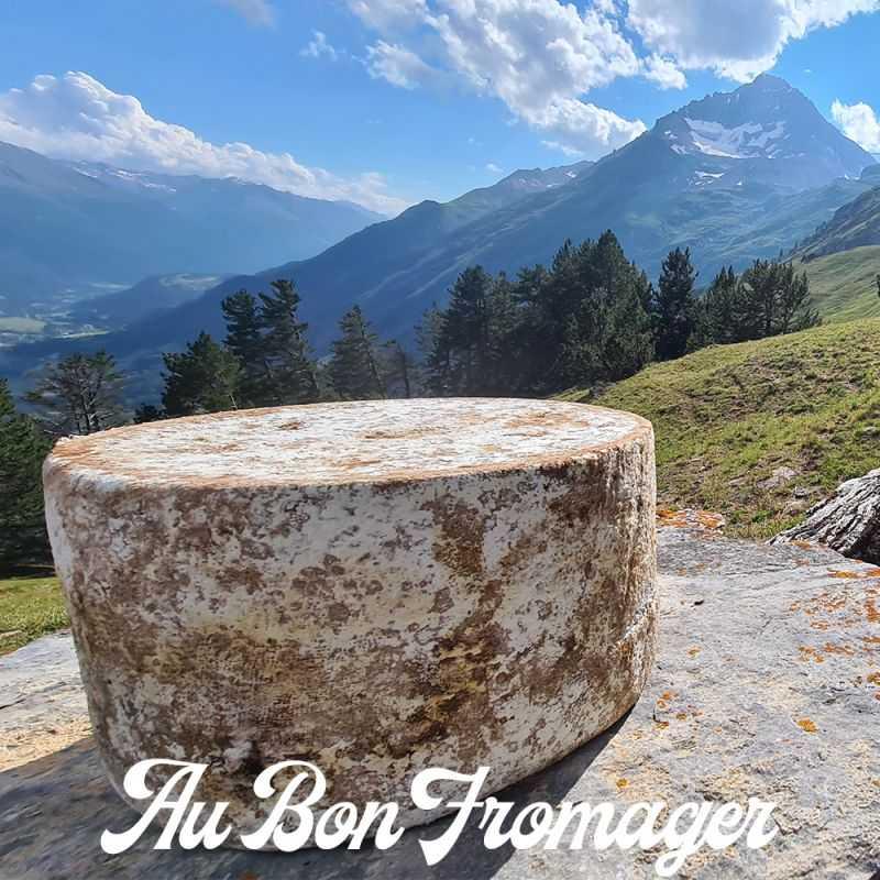 Fromage Bleu de Termignon Fermier d'Alpage
